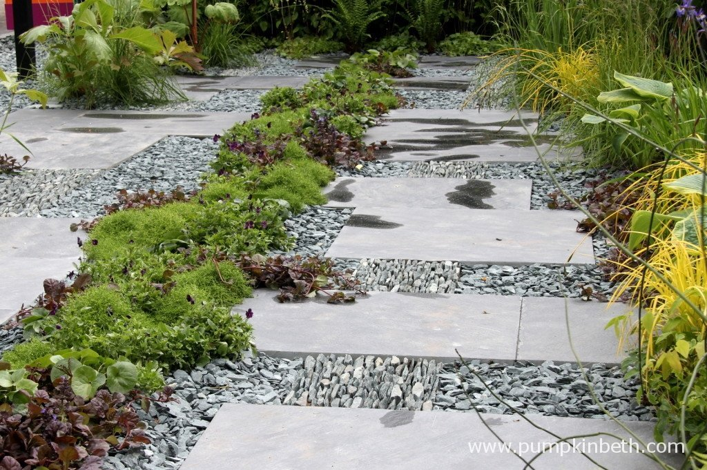 A close up of some of the planting in The Great Chelsea Challenge Garden, designed by Sean Murray