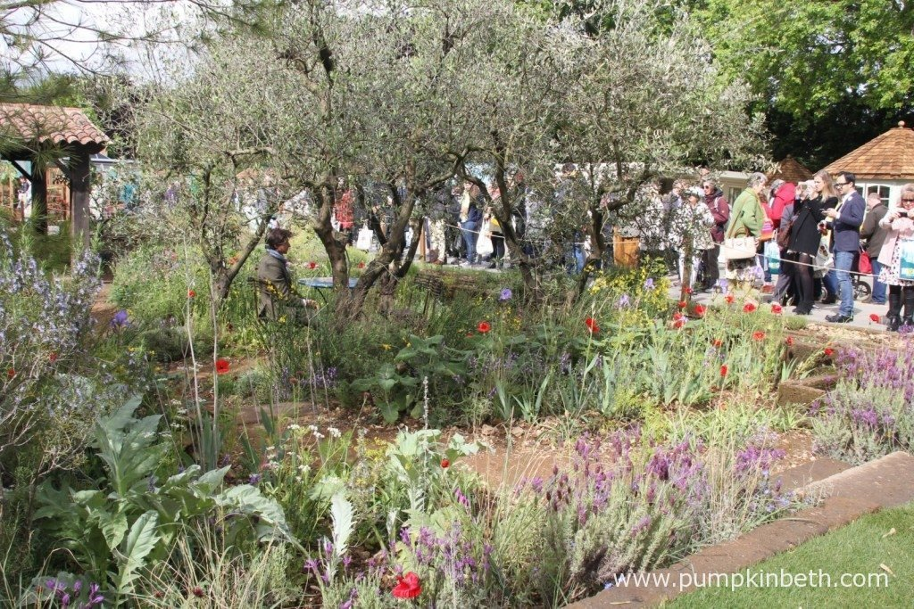 James Basson in his Gold Medal winning garden, 'A Perfumer's Garden in Grasse by L'Occitane', at the RHS Chelsea Flower Show 2015.