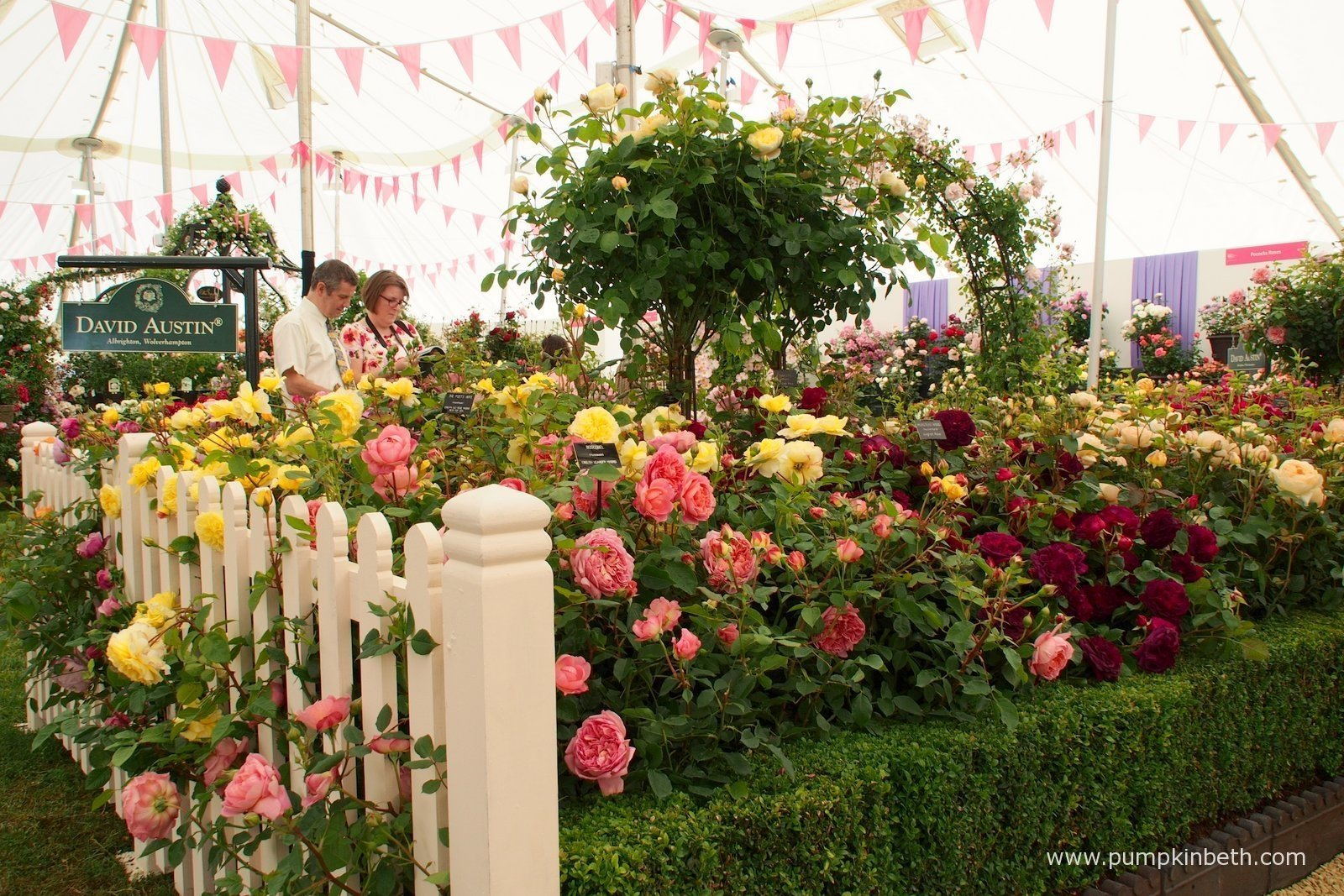 The Festival of Roses at The RHS Hampton Court Palace Flower Show 2015 Pump