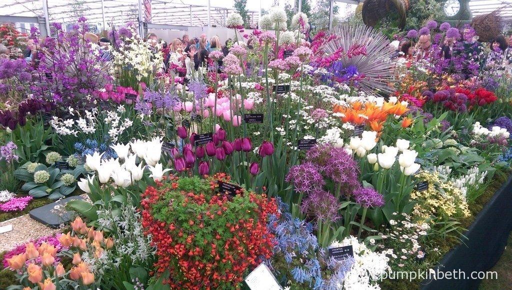 Avon Bulbs Gold Medal winning exhibit at the 2015 RHS Chelsea Flower Show.