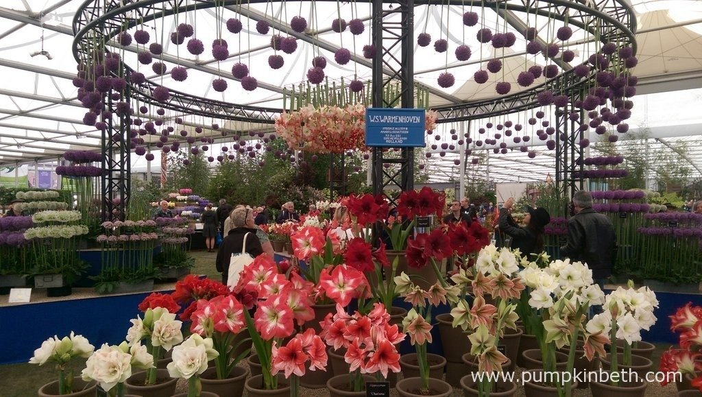 W. S. Warmenhoven's beautiful exhibit at the 2015 RHS Chelsea Flower Show.