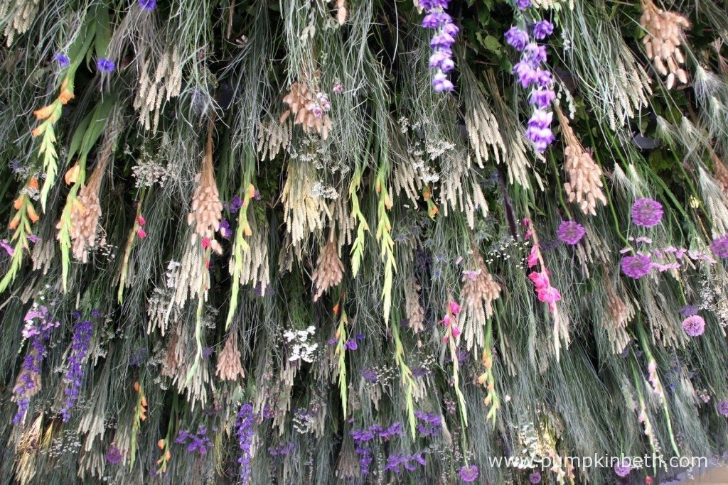 Hanging flowers at the RHS Chelsea Flower Show.