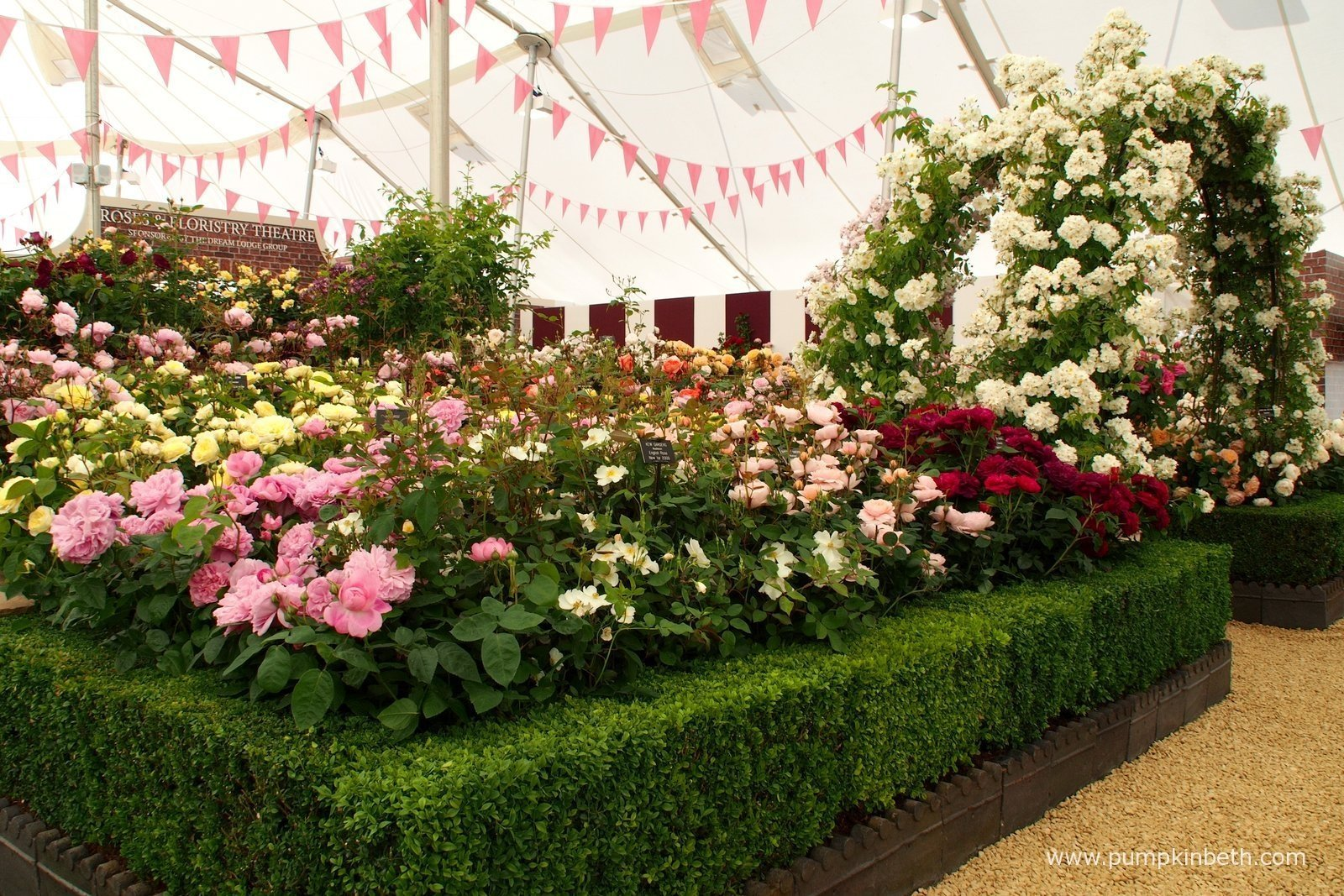 Rhs hampton court palace flower show 2015 pumpkin beth - Hampton court flower show ...