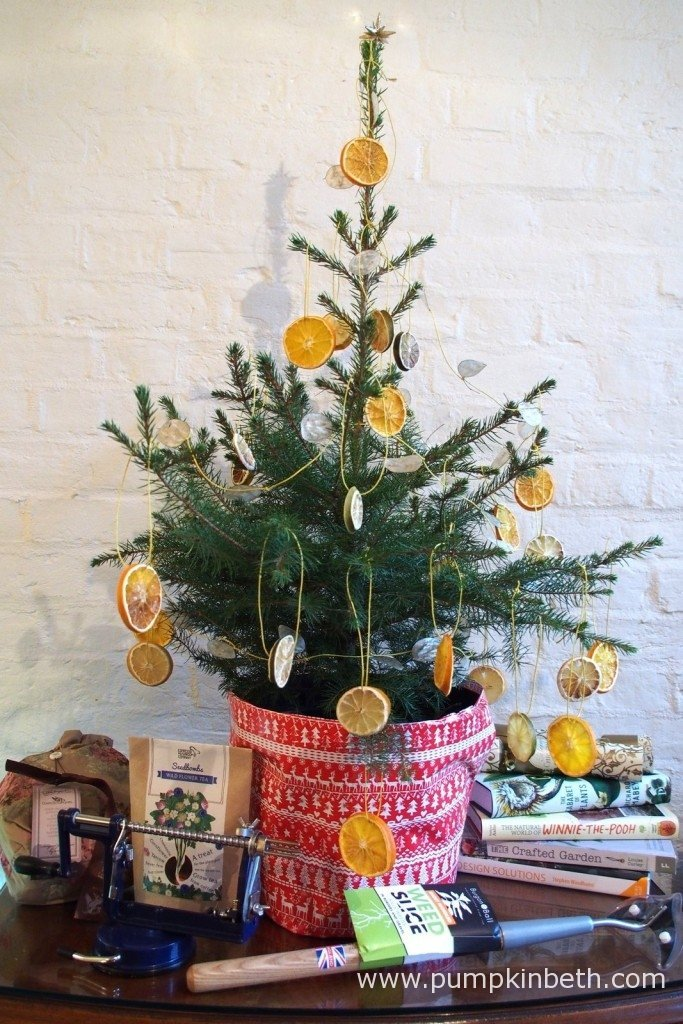 A Norway Spruce Christmas Tree, growing in a pot from Wheeler Street Nurseries in Witley, Surrey, pictured together with some of the Christmas present ideas I have suggested.