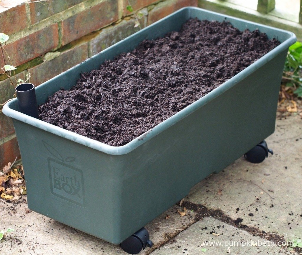 The EarthBox filled with Dalefoot peat-free compost.