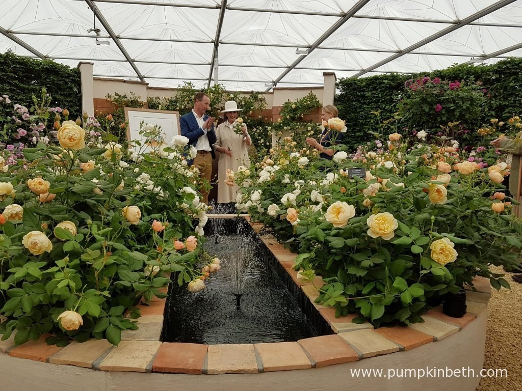 David Austin Roses and Liccy Dahl launch Rosa 'Roald Dahl' to commemorate the centenary year of Roald Dahl's birth, in The Great Pavilion, at the RHS Chelsea Flower Show 2016.