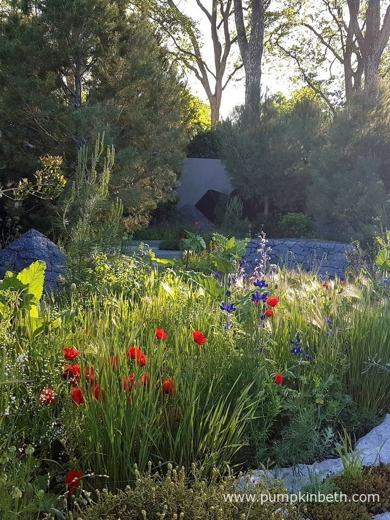 In his design for The Royal Bank of Canada Garden, at The RHS Chelsea Flower Show 2016, Hugo Bugg celebrates water, not just as a commodity, but as a sacred entity for the world to savour, respect, celebrate and rejoice in.