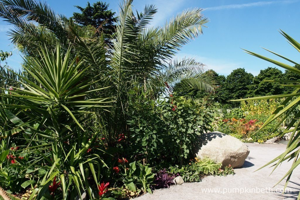 The Journey Latin America's Inca Garden was designed by Jennifer Jones. This World Show Garden was sponsored by Journey Latin America, and built by Surrey Hills Landscaping. The RHS judges awarded the garden a Silver Medal, at the RHS Hampton Court Palace Flower Show 2016.