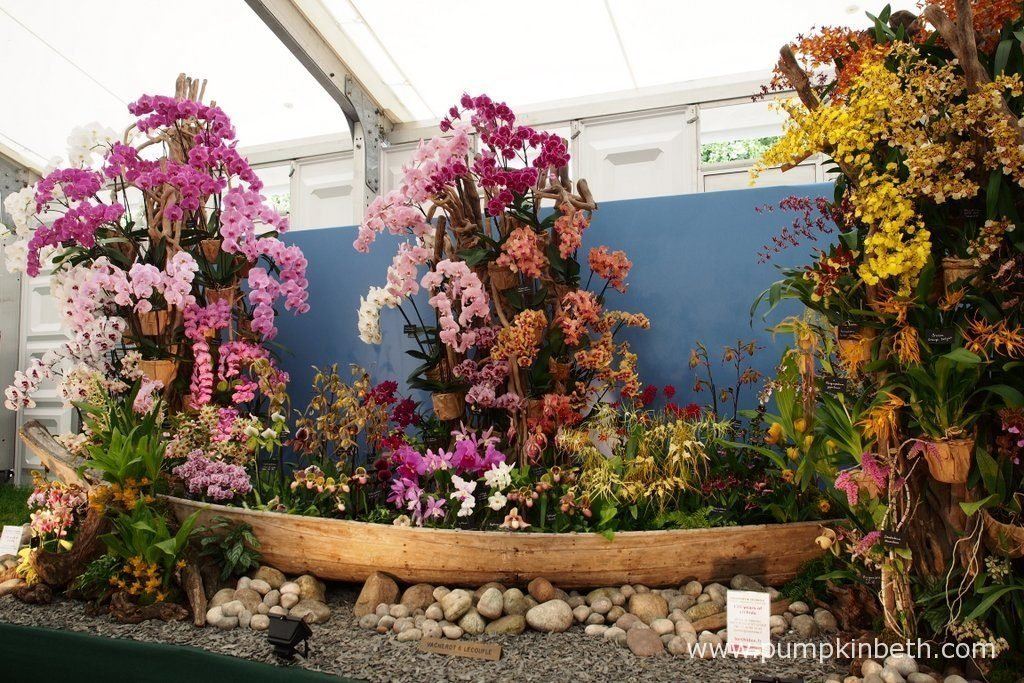 Vacherot & Lecoufle were awarded a Gold Medal, and the prestigious award of Best Exhibit in the Floral Marquee, at the RHS Hampton Court Palace Flower Show 2016. Vacherot & Lecoufle's beautiful display featured flowering orchids in a wooden boat.