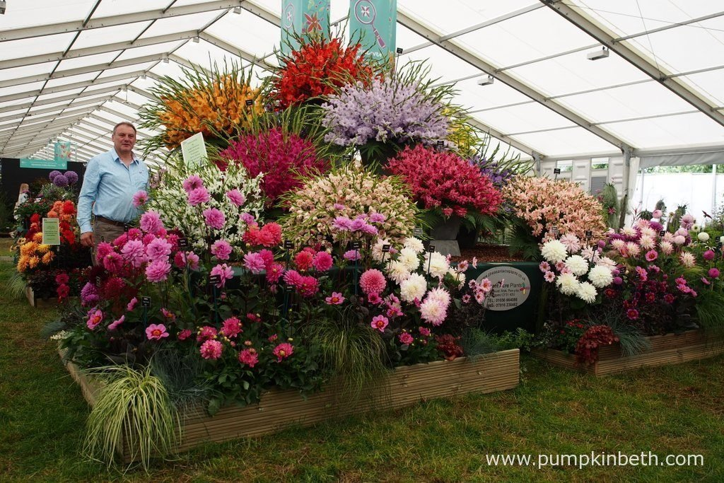 Rob Evans from Pheasant Acre Plants, pictured with his Gold Medal winning display of Gladioli and Dahlias, inside the Floral Marquee, at the RHS Hampton Court Palace Flower Show 2016.