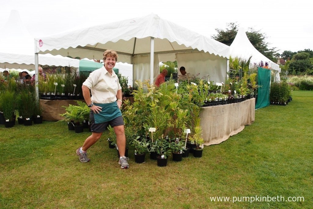 Claire Batten from Penberth Plants, with her super plant stand, at the RHS Wisley Flower Show 2016.