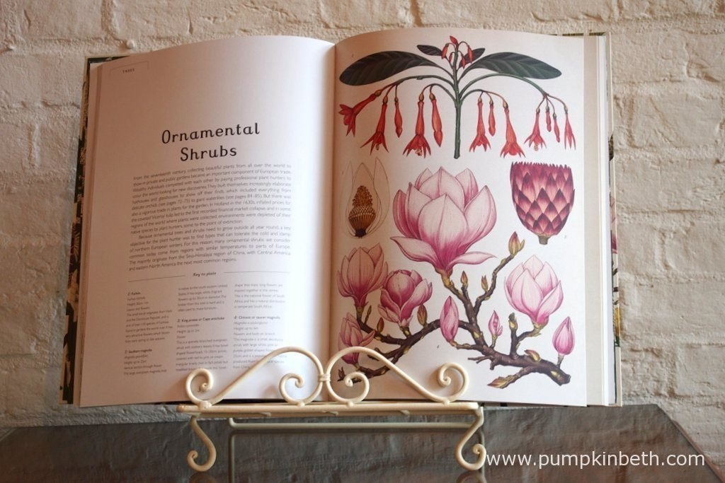 Botanicum is a magical book. I think it would make a super gift this Christmas.