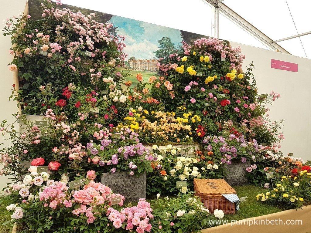 rhs hampton court palace flower show 2017 - pumpkin beth