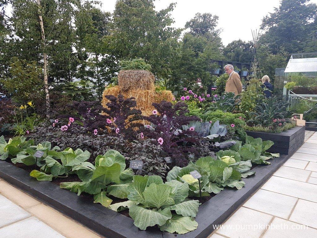 Juliet sargeant and the rhs kitchen garden pumpkin beth for How to make kitchen garden