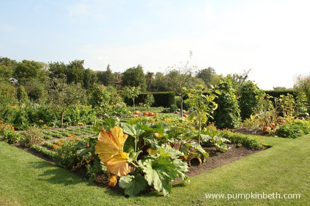 The lovingly tended Vegetable Garden at Loseley Park in September