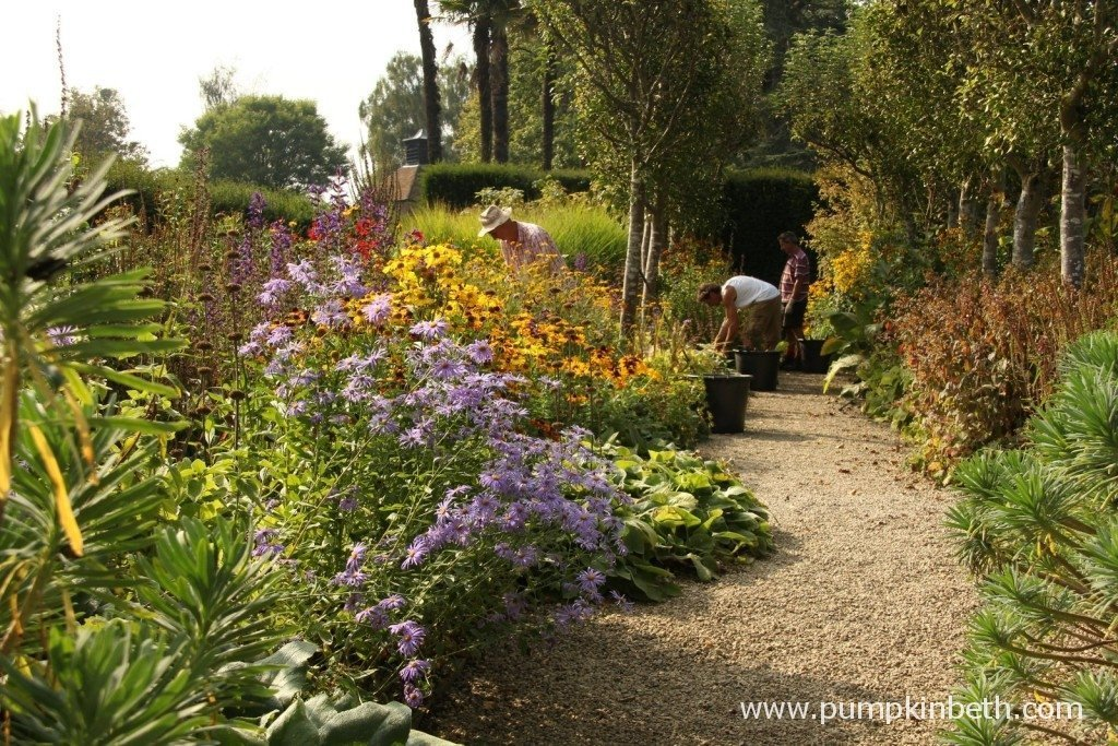 Colourful borders at Loseley Park