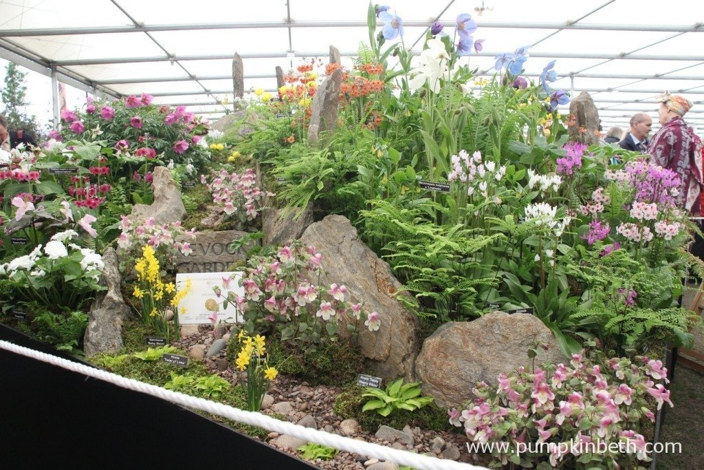 Scottish nursery Kevock Garden Plants Gold Medal winning exhibit at the 2015 RHS Chelsea Flower Show