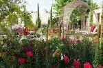RHS Hampton Court Palace Flower Show 2015
