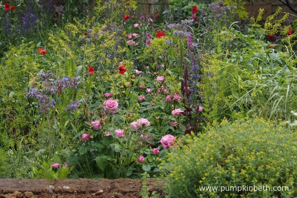 Even in the rain at the RHS Chelsea Flower Show this garden had a lightness and delicacy to its beauty.