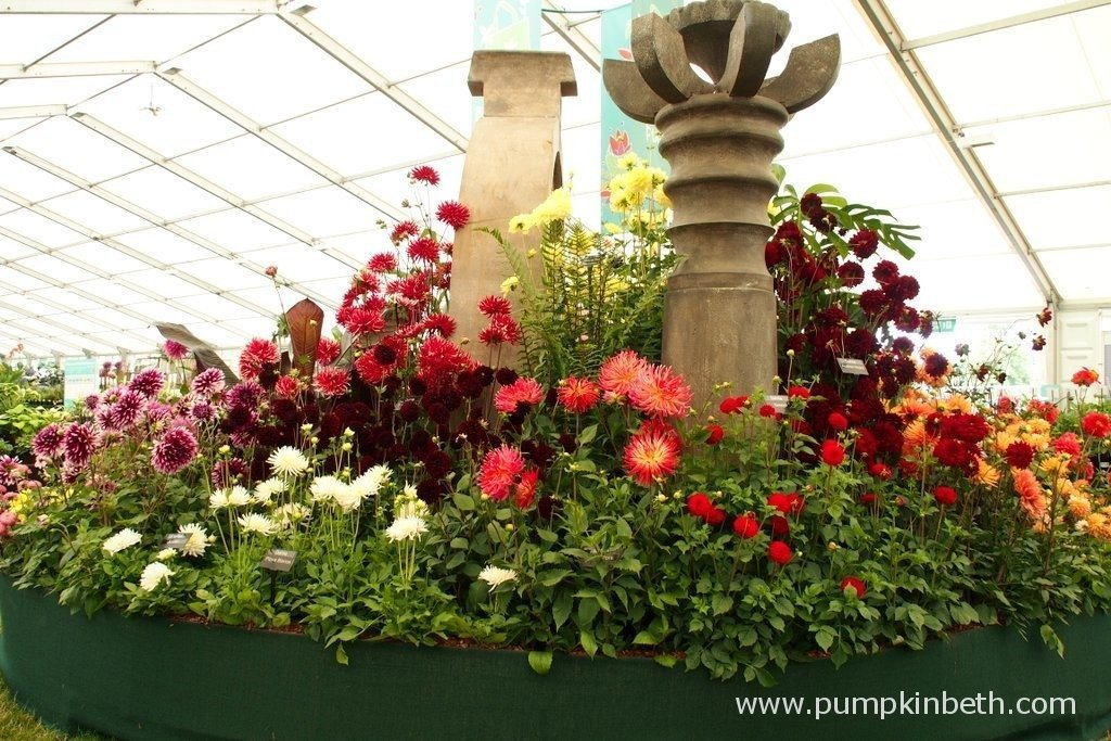 Here's the Gold Medal winning Dahlia exhibit from The National Dahlia Collection at the 2015 RHS Hampton Court Palace Flower Show. You can visit the National DahliaCollection's website by clicking here.