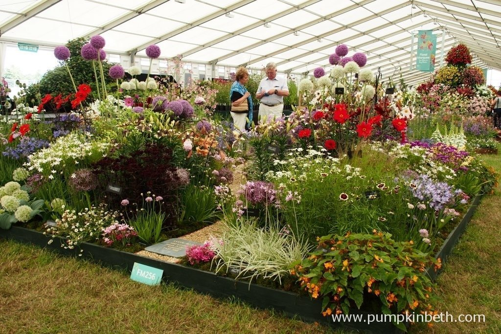 This is the 2015 Gold Medal winning exhibit from Avon Bulbs at the RHS Hampton Court Palace Flower Show. Avon bulbs are are small, family run nursery, based close to South Petherton in Somerset.