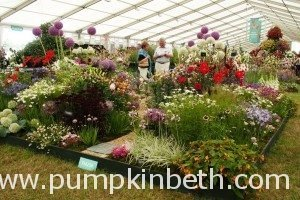 2019 Specialist Plant Fairs, Festivals, Sales, and Swaps