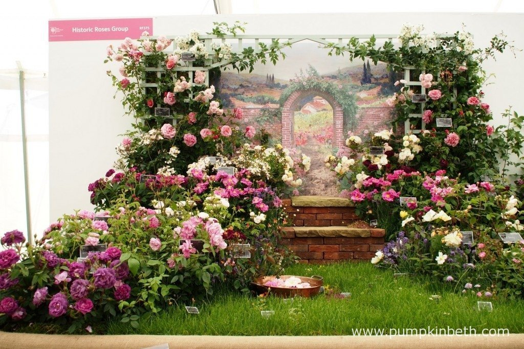 This lovely rose exhibit was created by the Historic Roses Group inside The Festival of Roses Marquee, at the 2015 RHS Hampton Court Palace Flower Show.