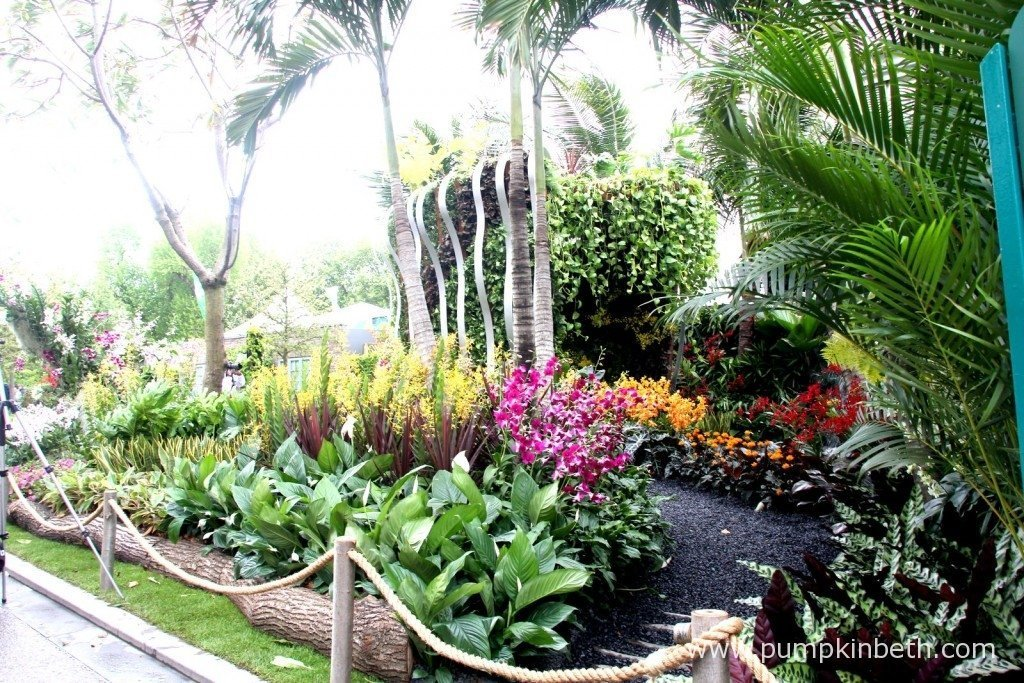 The Hidden Beauty of Kranji by Esmond & Uniseal featured plants native to Singapore, including orchids, palm trees and ferns. The garden was designed by John Tan and Raymond Toh.