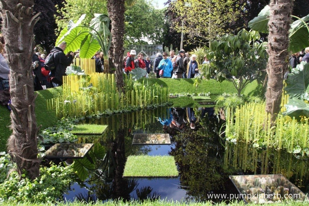The World Vision Garden, designed by John Warland and built by Garden Builders attracted a lot of interest from visitors at the RHS Chelsea Flower Show.