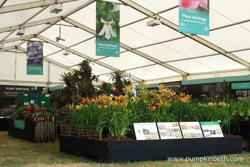 The Plant Heritage Marquee was filled with interesting and beautiful heritage plants, visitors were able to ask advice from plant specialists and experts and find out more about plant heritage.