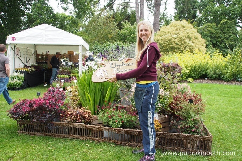 Louise Batchelor from Eleplants Nursery, one of the wonderful independent nurseries that will be at the RHS Wisley Flower Show 2016.