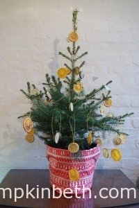 Live, Growing, Potted Christmas Trees From Wheeler Street Nurseries in Witley