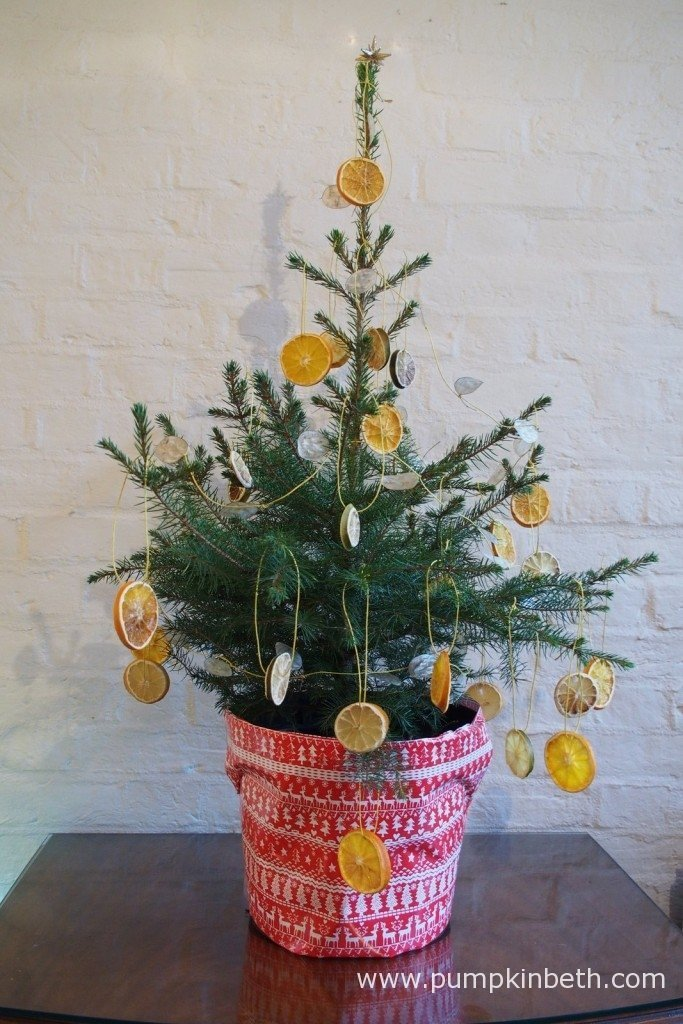 I decorated my Norway Spruce Christmas tree from Wheeler Street Nurseries in Witley, with home-made natural Christmas decorations and wrapped the pot in festive wrapping paper.