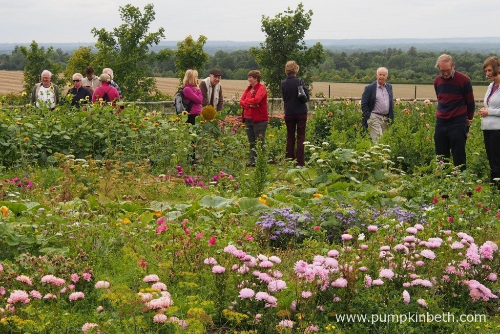 Claire Brown (pictured, centre, in the red jacket) at her flower farm, Plantpassion, in East Clandon in September.