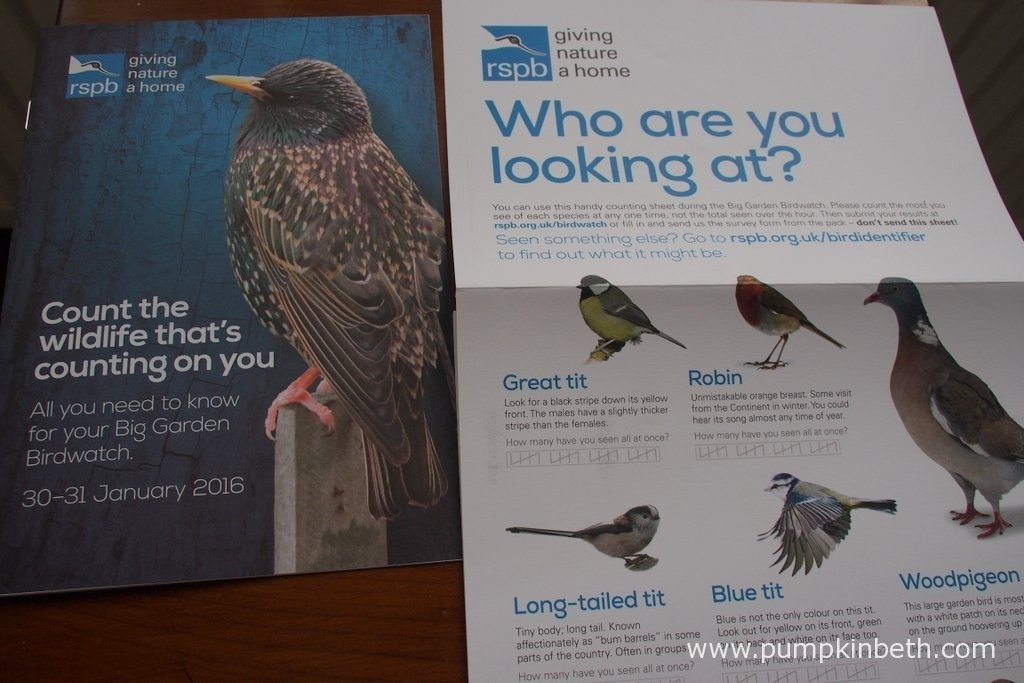 If you apply to take part in the RSPB's Big Garden Birdwatch, the RSPB send you a useful pack which contains a pamphlet with useful bird pictures to help you identify the birds you see.