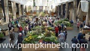 RHS London Spring Plant Extravaganza 2016
