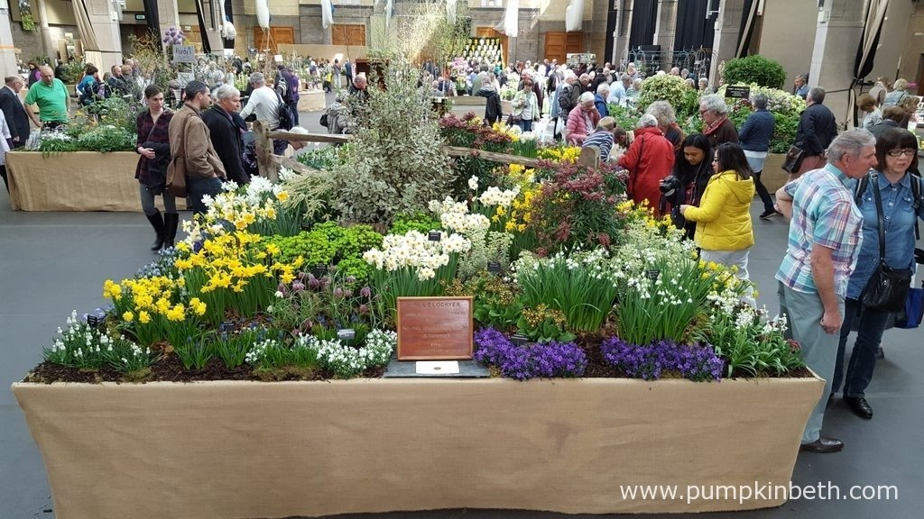 The RHS London Spring Plant Extravaganza is open from 10am until 5pm on Saturday 2nd April 2016. With a number of award winning nurseries together all in one place, it's a great place to buy some very special plants.