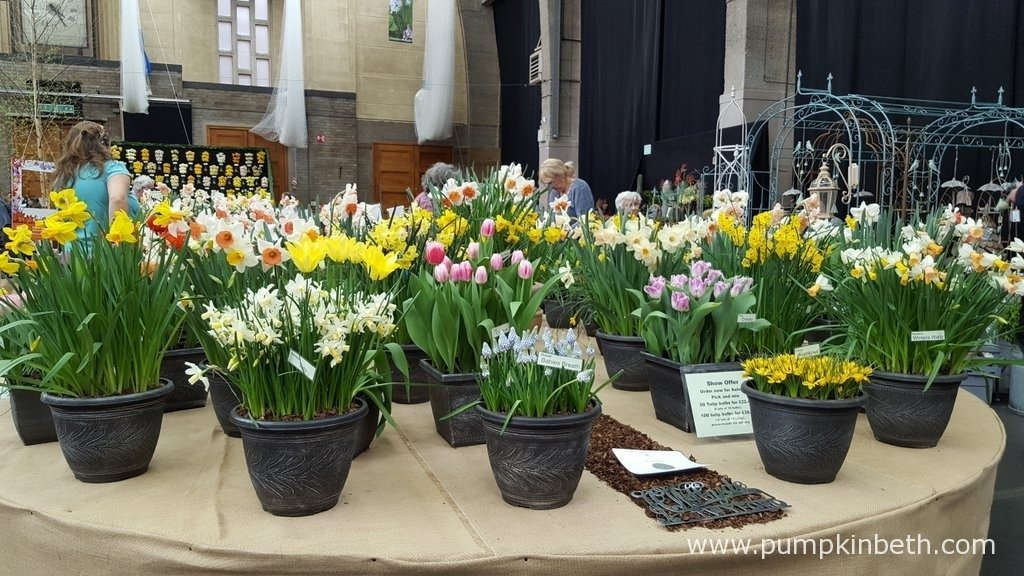 W. H. Hyde & Son are specialist growers of lilies and other bulbs. Their beautiful exhibit at The RHS London Spring Plant Extravaganza included many scented flowers, including beautifully scented crocus and daffodils. The RHS Judges awarded W. H. Hyde & Son a Silver Medal for their exhibit.