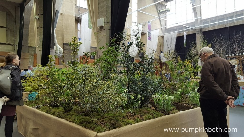 The Botanic Nursery's Silver Gilt Medal exhibit at the RHS London Spring Plant Extravaganza.