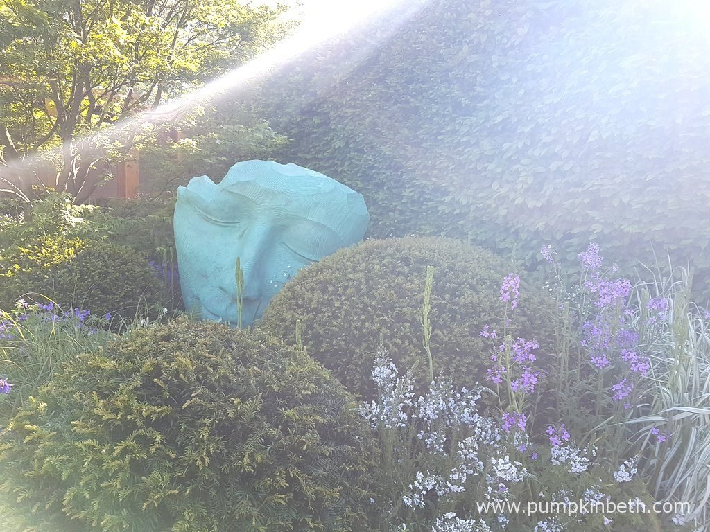 Morning light shines over The Morgan Stanley Garden for Great Ormond Street Hospital, at The RHS Chelsea Flower Show 2016. The sculpture you see pictured here, is entitled 'Fallen Deodar', it was created by sculptor Jilly Sutton from oak and verdigris bronze. The delicate white flower at the front of the photograph is Veronica gentianoides, the purple flower with it, is Hesperis matronalis. Carpinus betulus, also known as common hornbeam, forms the hedge.