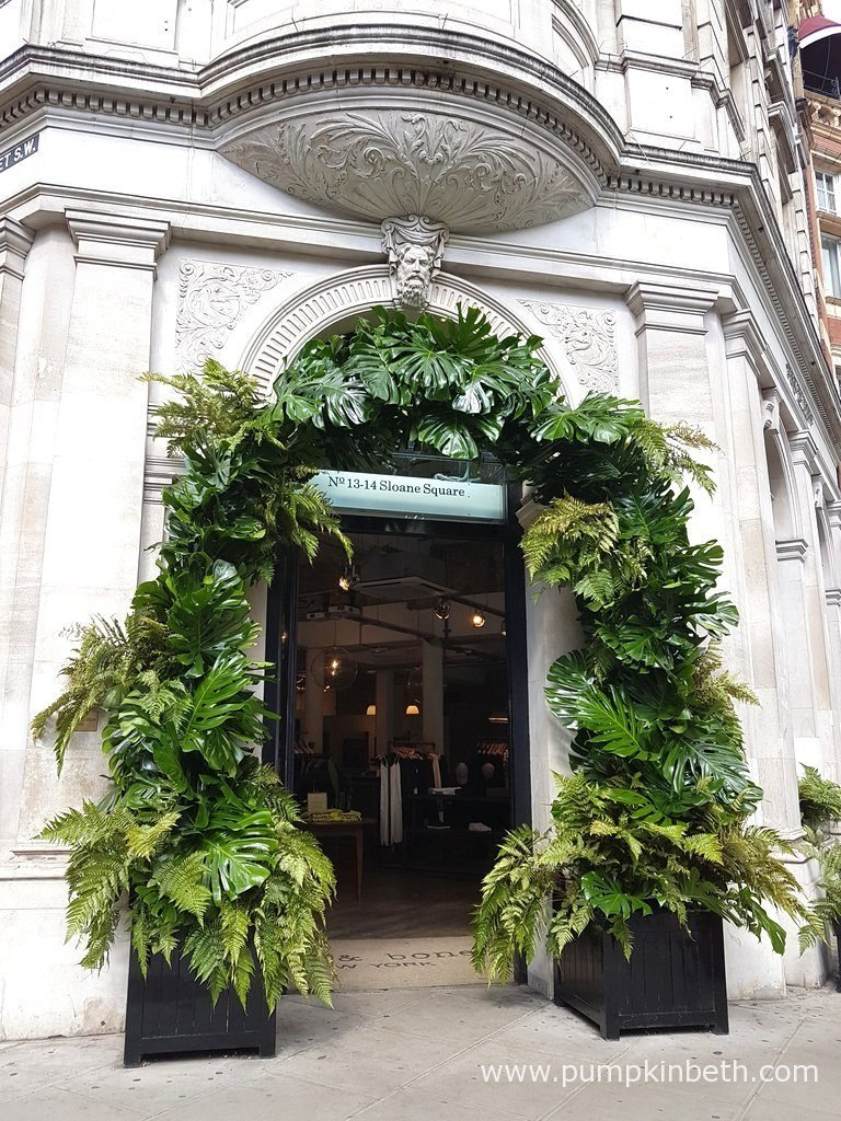 Rag & Bone's floral display for Chelsea in Bloom 2016, featured this wonderful leaf arch, which really enhances the entrance to their store.