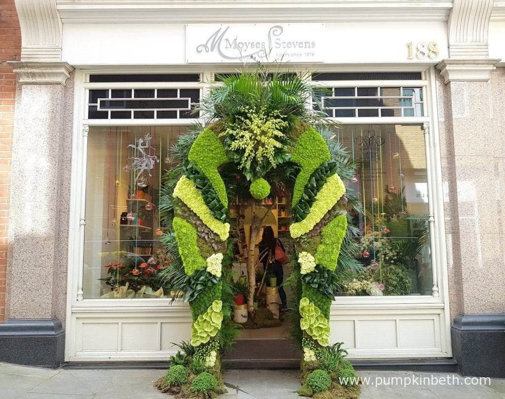 Moyses Stevens were awarded a Silver Medal for their beautiful floral arch which featured tones of green, cream and brown and a variety of textures created using Anthuriums, Chrysanthemums, Carnations, Begonia leaves, moss, Dianthus, Roses, ferns, orchids and other materials. I loved this one!