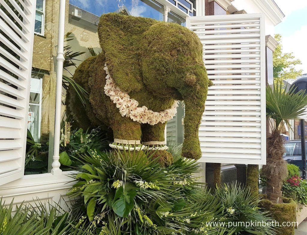 A closer look at the beautiful moss elephant that's half inside, and half outside, the shop front of The White Company.