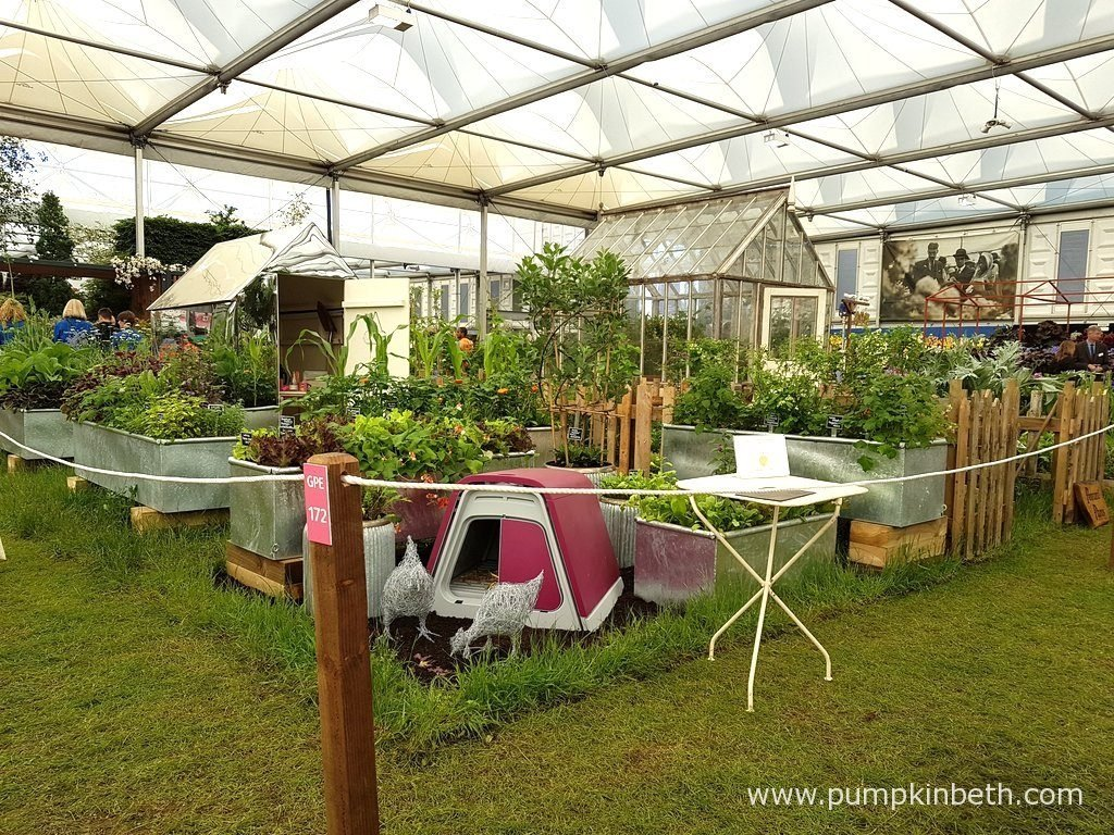 Pennard Plants exhibit at The RHS Chelsea Flower Show 2016, was designed as three allotment plots, one of which was symbolic of the time 90 years ago, to celebrate the Queen's 90th birthday. Another was an allotment, the idea of which was based on the Chelsea Pensioners allotment in The Royal Hospital grounds, and the third was a contemporary allotment which featured a mirrored shed and interesting edible plants.