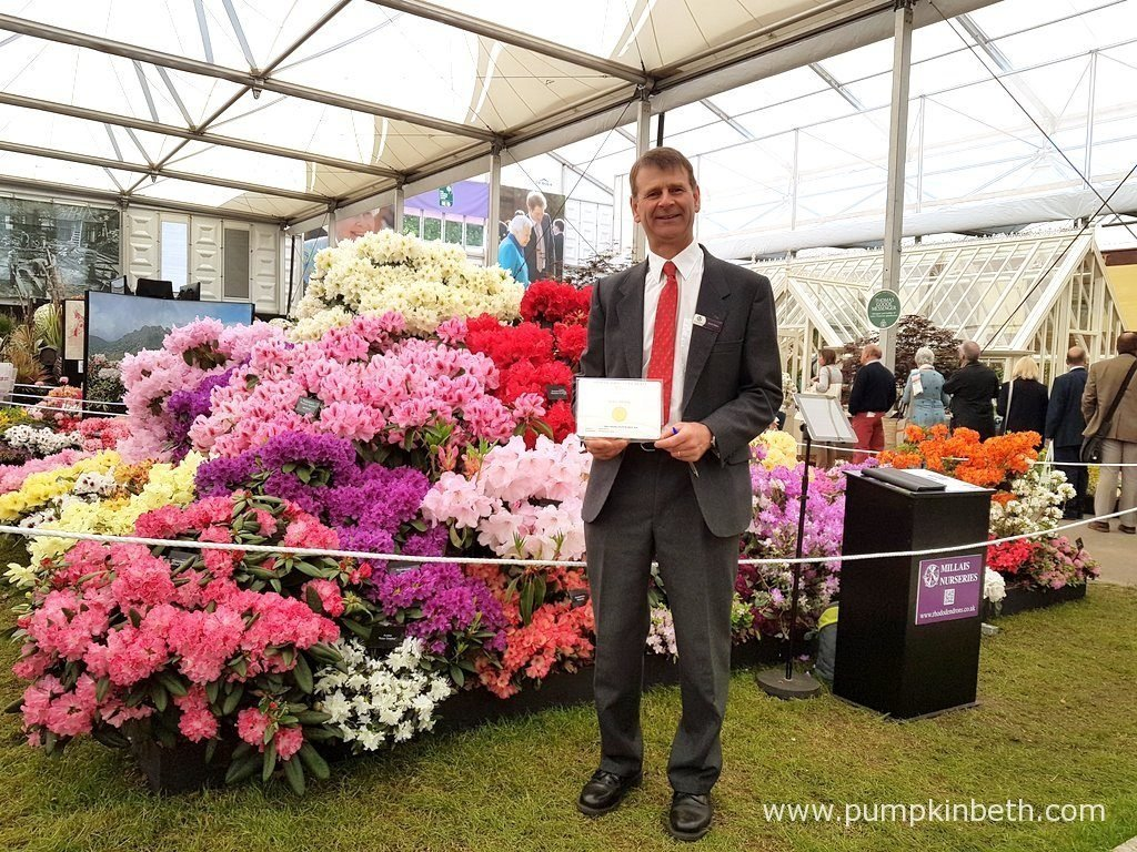 David Millais from Millais Nurseries with his Gold Medal, inside The Great Pavilion, at The RHS Chelsea Flower Show 2016.