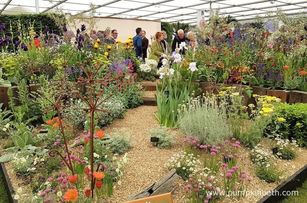Daisy Roots is a lovely independent, award winning nursery from Hertford, in Hertfordshire. Daisy Roots is owned and run by Annie Godfry, who grows and supplies healthy, hardy perennials and ornamental grasses.