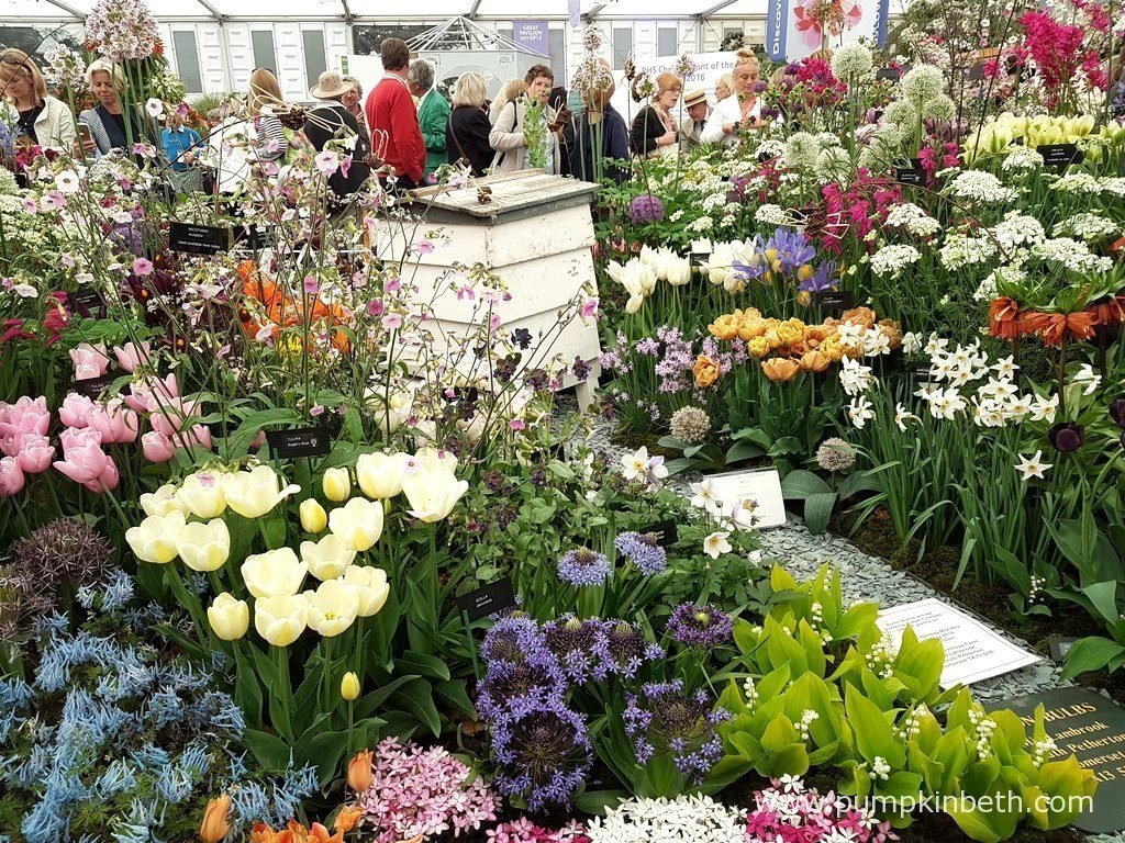 Avon Bulbs created this beautiful exhibit, full of Tulips, daffodils, Alliums, lily of the valley, and other flowering bulbs, for The RHS Chelsea Flower Show 2016.