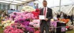 Millais Nurseries' Gold Medal at the RHS Chelsea Flower Show 2016