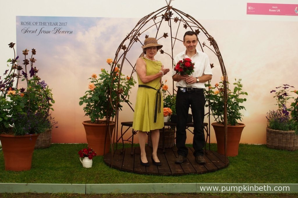 Marion Dickens and Ronnie Rawlins present Rosa 'Charles Dickens', a new red hybrid tea rose with excellent disease resistance, that was launched inside The Festival of Roses Marquee at the RHS Hampton Court Palace Flower Show 2016. Rosa 'Charles Dickens' was bred by Ronnie Rawlins, and selected by Marion Dickens, the great-great-granddaughter of Charles Dickens, to raise money to fund a new visitor centre, museum, and rose garden, at Gads Hill Place in Kent, where Charles Dickens spent 13 years of his life.