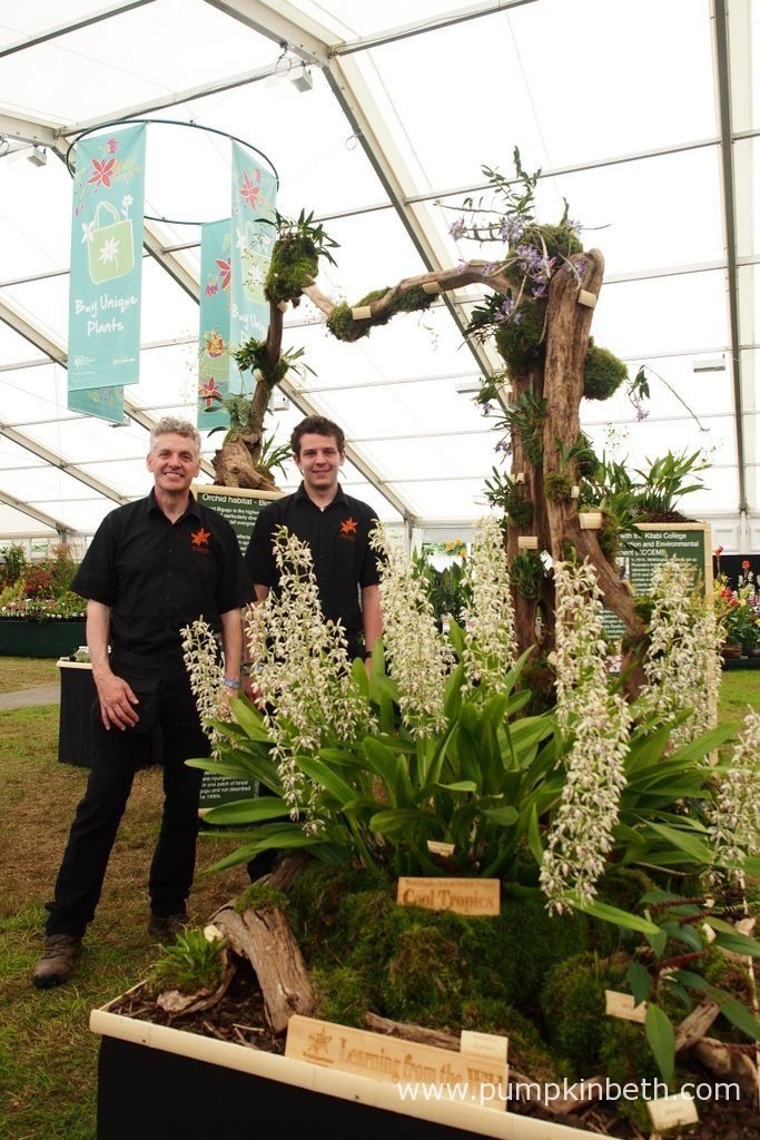 Simon Pugh-Jones and Jacob Coles from the Writhlington School Orchid Project are pictured with the Gold Medal winning display, they created for the RHS Hampton Court Palace Flower Show 2016. The RHS Judges awarded their exhibit, which was filled with orchids grown by Simon Pugh-Jones, Jacob and other students from the Writhlington School, a Gold Medal.